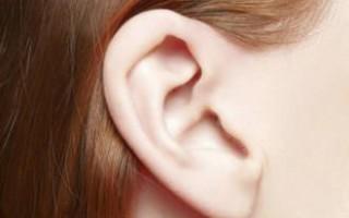 Что делать, когда в мочке уха появился шарик и болит