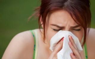 Аллергический ринит – лечение народными средствами, симптомы, аллергены