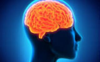 Улучшение памяти с помощью витамин и народных средств