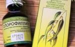 Хлорофиллипт от насморка как применять, отзывы, побочные эффекты