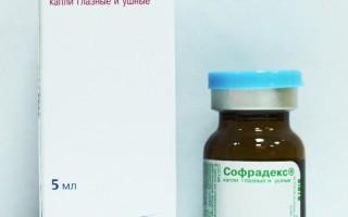 Софрадекс в нос: инструкция по применению и особенности лечения