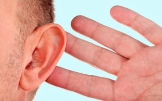 Характеристика наружного уха