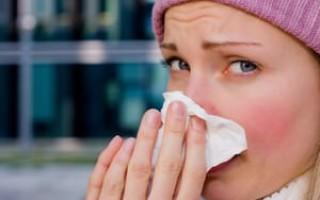 Постоянно частое чихание — причины
