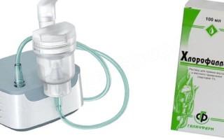 Хлорофиллипта для ингаляций раствор | метод применения в небулайзере