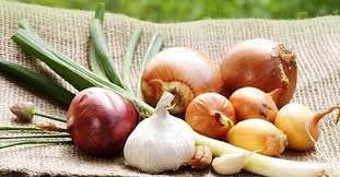 овощи от простуды