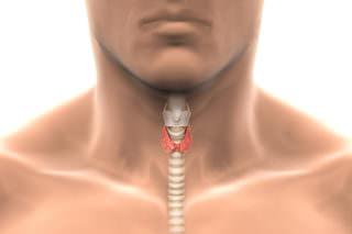 Гипертиреоз щитовидки