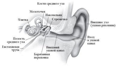 Инфекции среднего уха