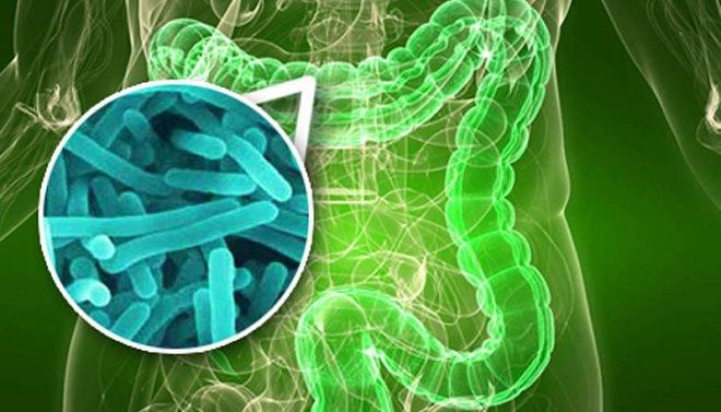 инфекция стафилококка в ЖКТ