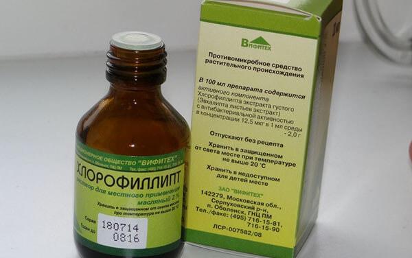хлорофиллипт для беременных