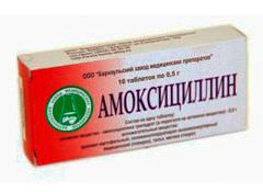 amoksicci