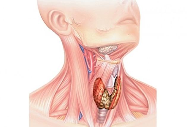 Спазм в горле