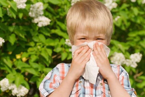 причиной одностороннего гайморита может быть хронический аллергический ринит