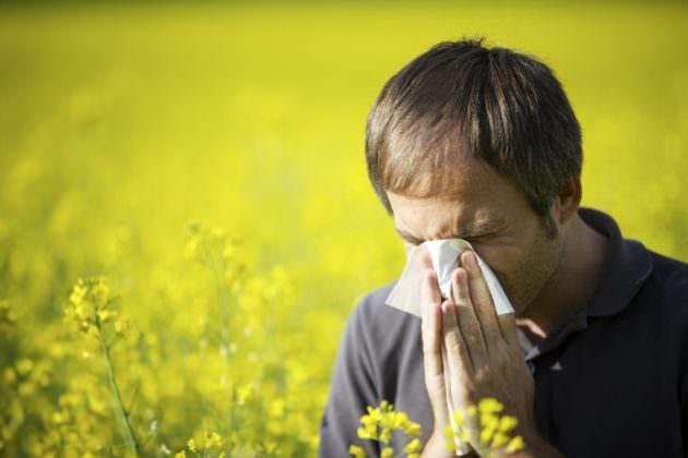 Прозрачные сопли долго не проходят при аллергическом рините