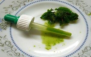 Особенности приготовления и использования сока каланхоэ от насморка у детей