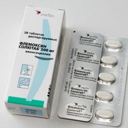 Флемоксин или амоксициллин