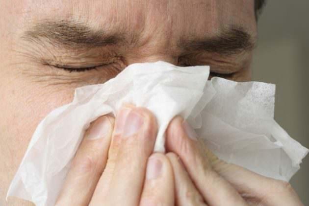 усиление насморка - побочный эффект от лечения гайморита каштаном
